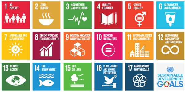 The United Nations Sustainable Development Goals
