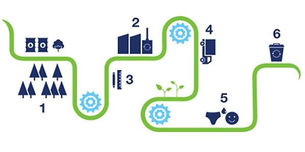 TENA зосереджена на екологічній та соціальній відповідальності на всіх етапах ланцюга створення продукту