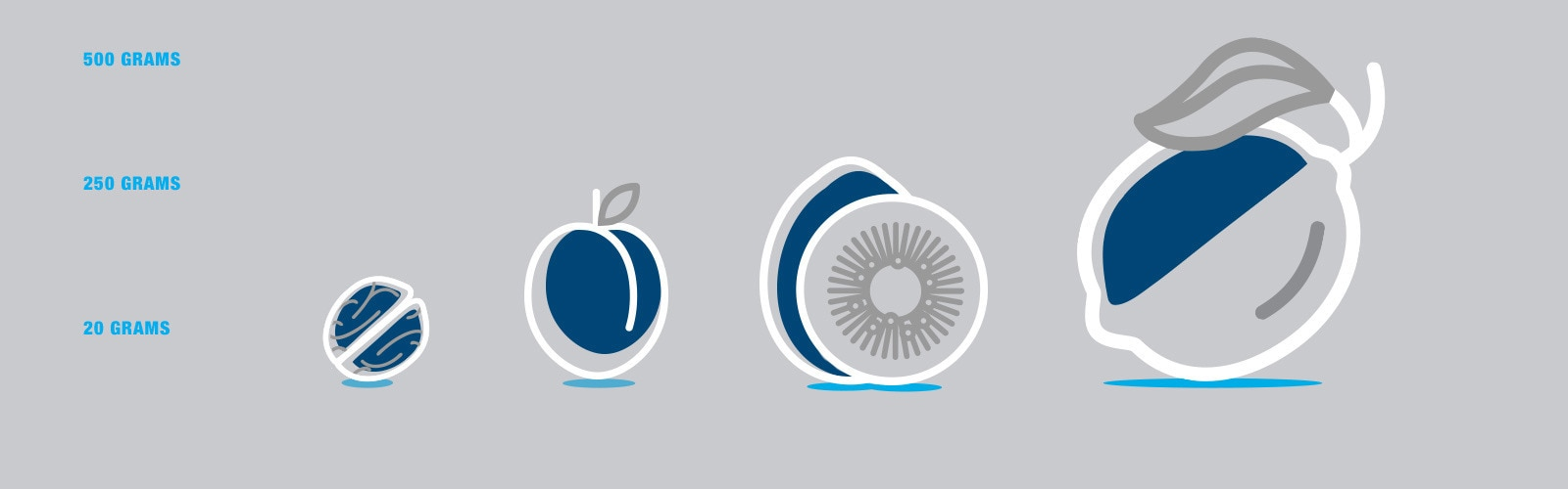 Illustrated icon of a walnut apricot kiwi and lemon with their weight on the left hand side