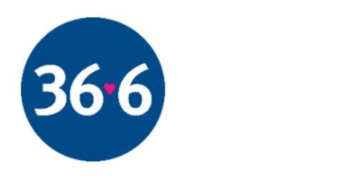 366.ru