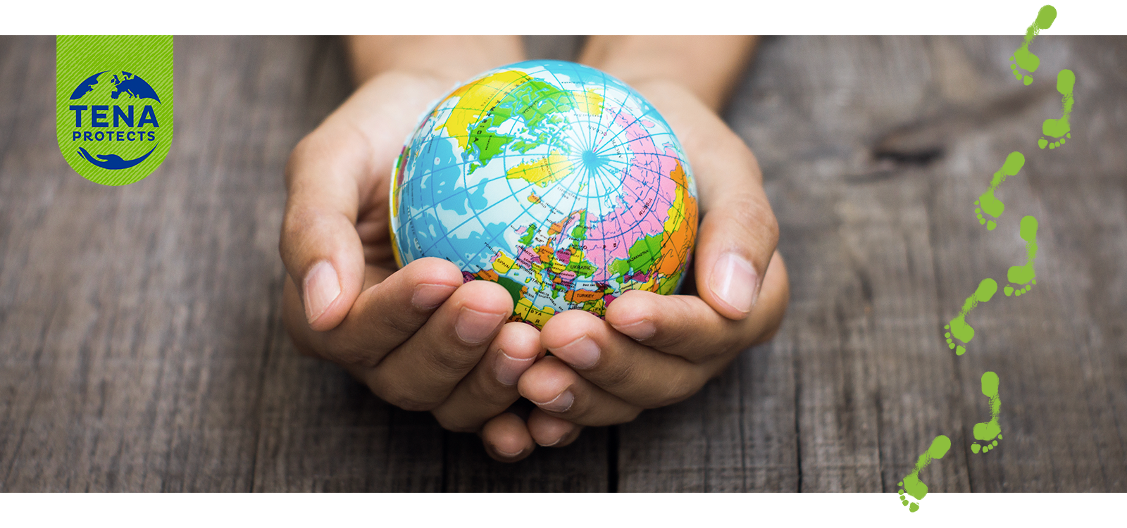Two hands, resting on a wood table, are gently cupping a small colorful globe showing the northern hemisphere.