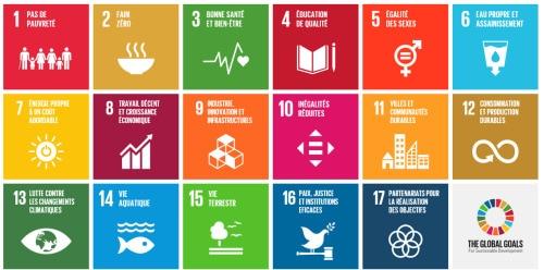 Objectifs de développement durable des Nations Unies (ODD)