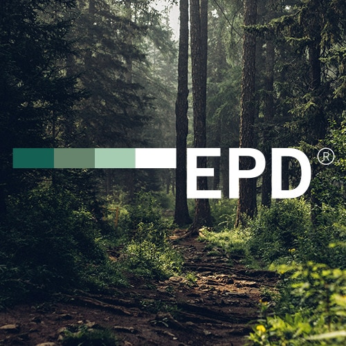 Sunbeams filter through tall pine trees creating flecks of light on the floor of a dark forest. The EPD logo is superimposed over the image.