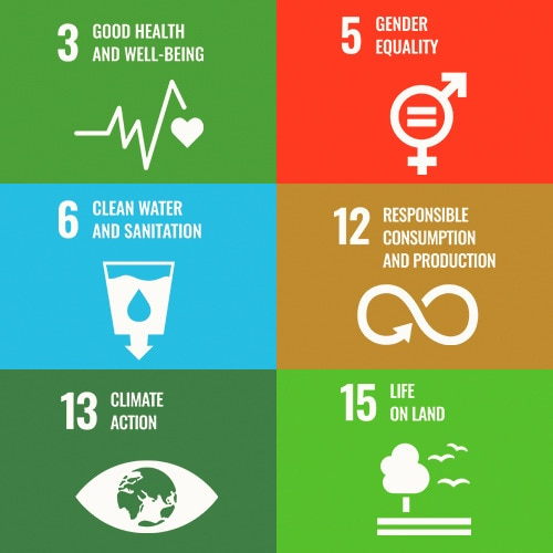 Six colored panels in a grid, each with an icon and text in white, listing UN Sustainable Development Goals 3, 5, 6, 12, 13, and 15.