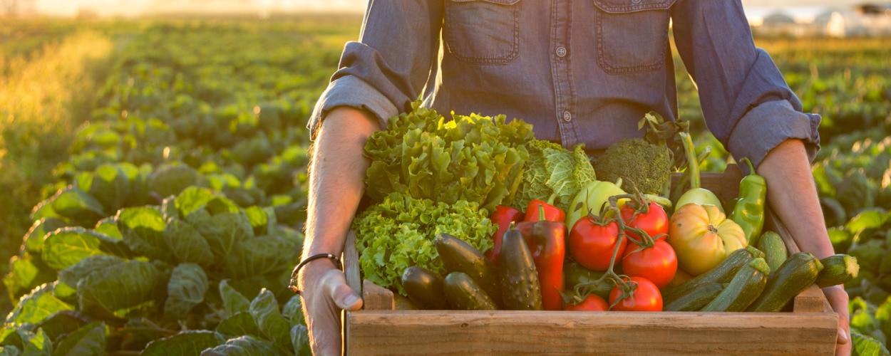 superalimentos, salud, dieta