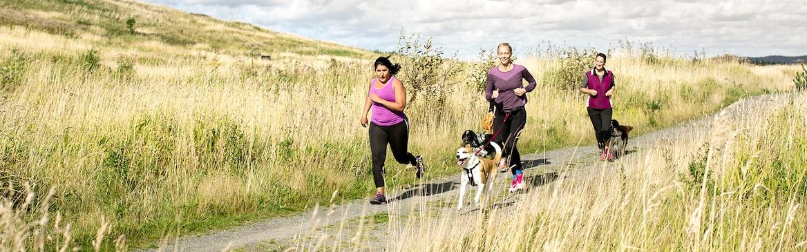 1600x500_tena-women-running-with-dogs.jpg