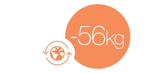–56 %